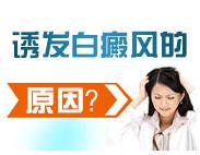 白癜风治疗最好方法